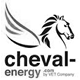 webanalyste-performance-web-logo-cheval-energy-nb