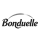 webanalyste--performance-web-logo-bonduelle-nb